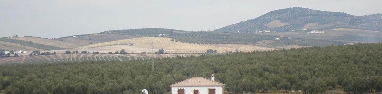 slider-entorno4-casa-cortijo-turismo-rural-cabra-subbetica-cordoba-andalucia-espana-spain-2